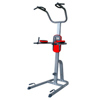 Romeinse stoel Fitness Doctor Tower Pro